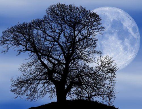 Astro: Spécial Pleine Lune 7 Mai